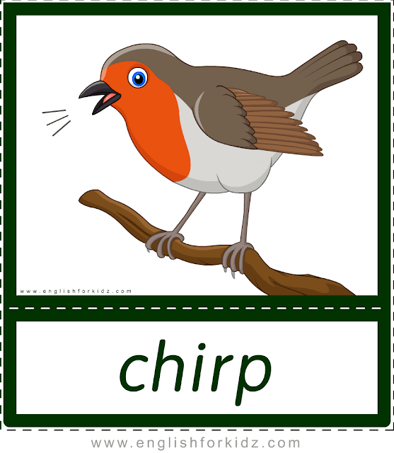 Animal sounds flashcards - chirp - bird -- printable ESL resources
