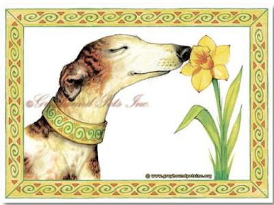 Greyhound Pets Inc.