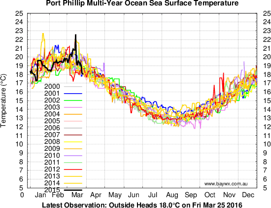 Phillip Island Water Temperature