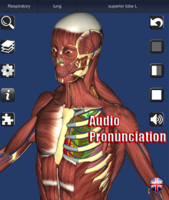 iPad apps for virtually exploring Anatomy - Careers and Education News