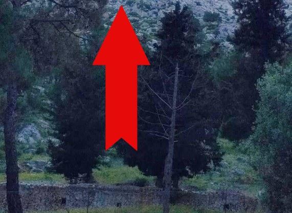 Xειροκροτάει Όλη Η Ελλάδα! Έφτιαξαν Στο Βουνό Κάτι Υπέροχο Σε 105 Τετραγωνικά! (ΦΩΤΟ)