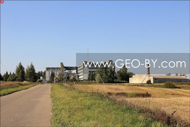Репродукторный свиноводческий комплекс в Вишнево