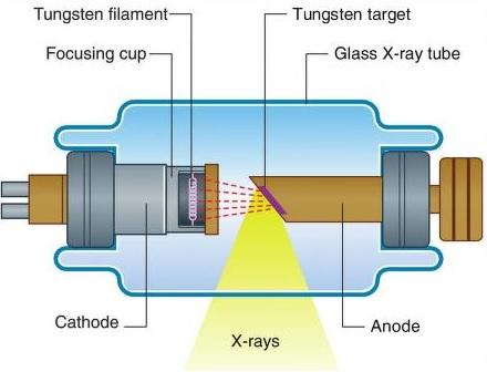 Science Natural Phenomena Medicine Cathode X Ray Tube Diagram