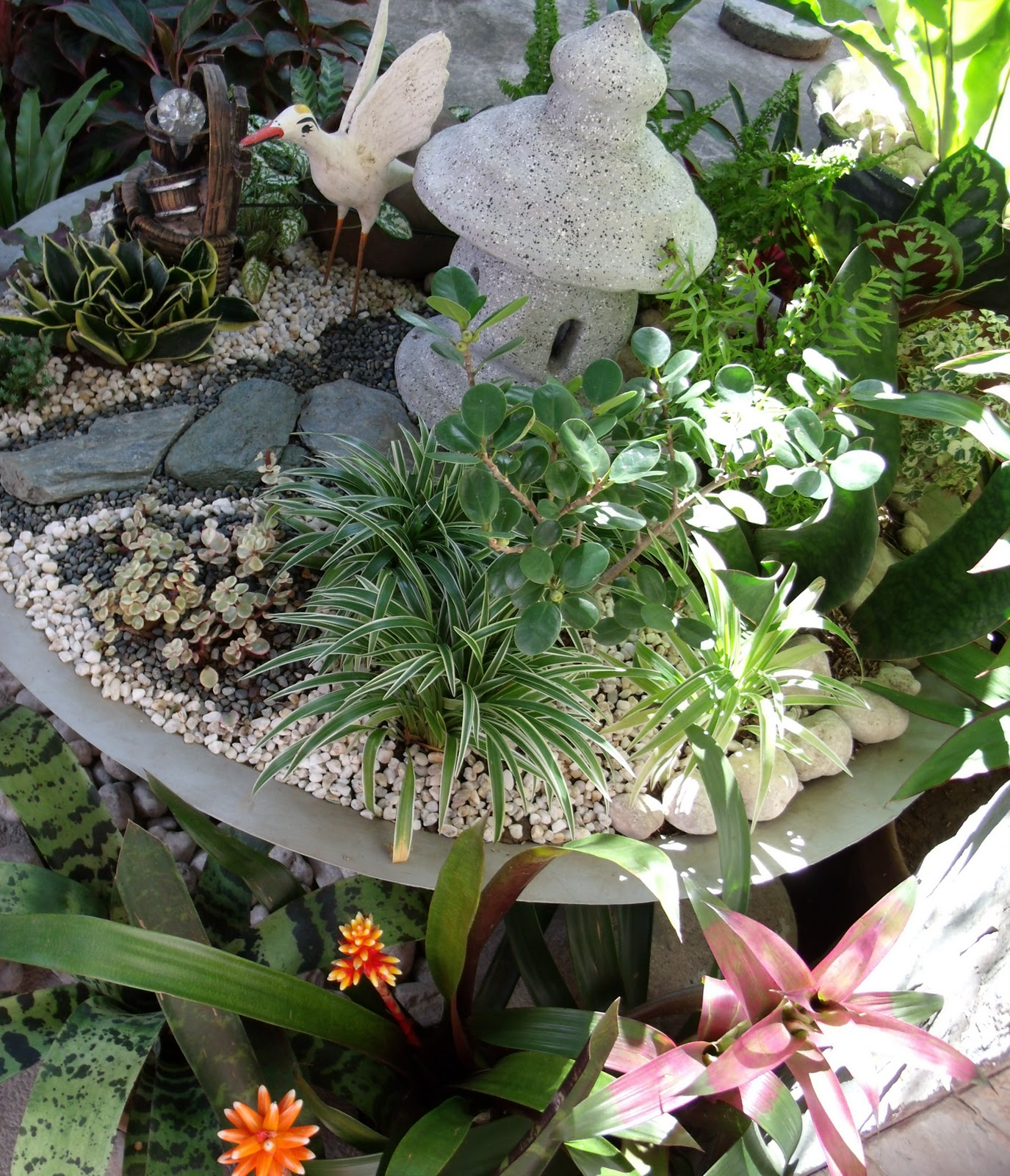 Simple Garden Thoughts: Making Of A Dish Garden