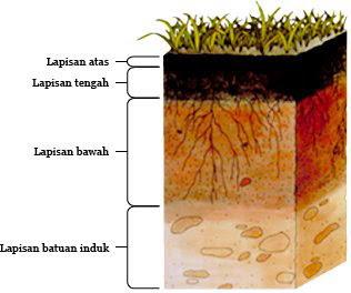 Mengenal Struktur dan Kerak Bumi