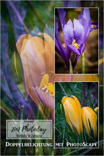 2in1 Photoday: Doppelbelichtung mit PhotoScape