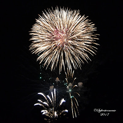 Fireworks 2017 Photo by Sylvestermouse