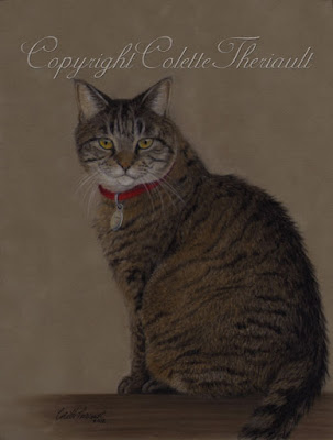 Brown Tabby Cat Painting in Pastel by Award Winning Artist Colette Theriault
