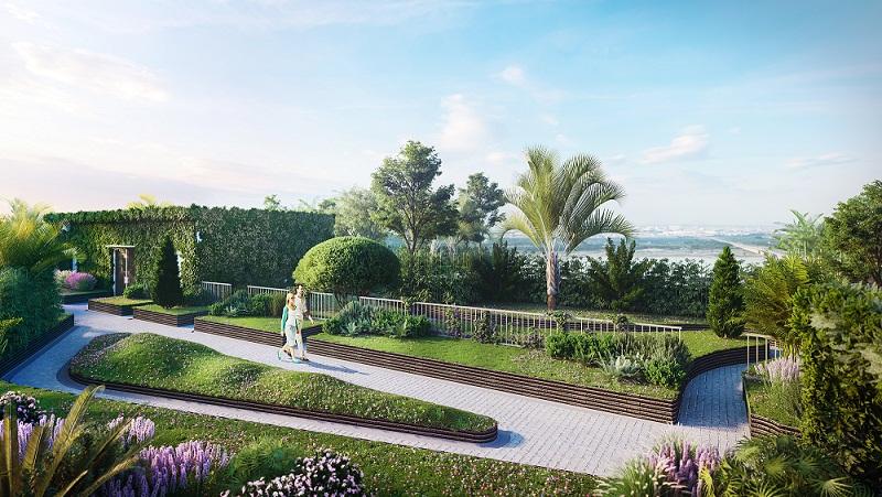 Sống xanh trong những khu vườn trên cao tại Chung cư 63 Nguyễn Huy Tưởng