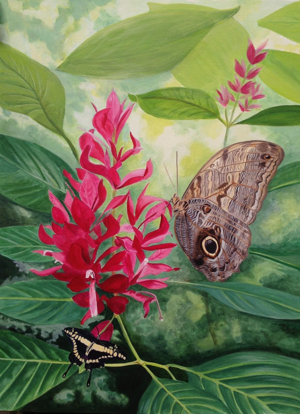 schilderijen van orchidee n andere botanische werken vlinders en tropische bloem acryl. Black Bedroom Furniture Sets. Home Design Ideas