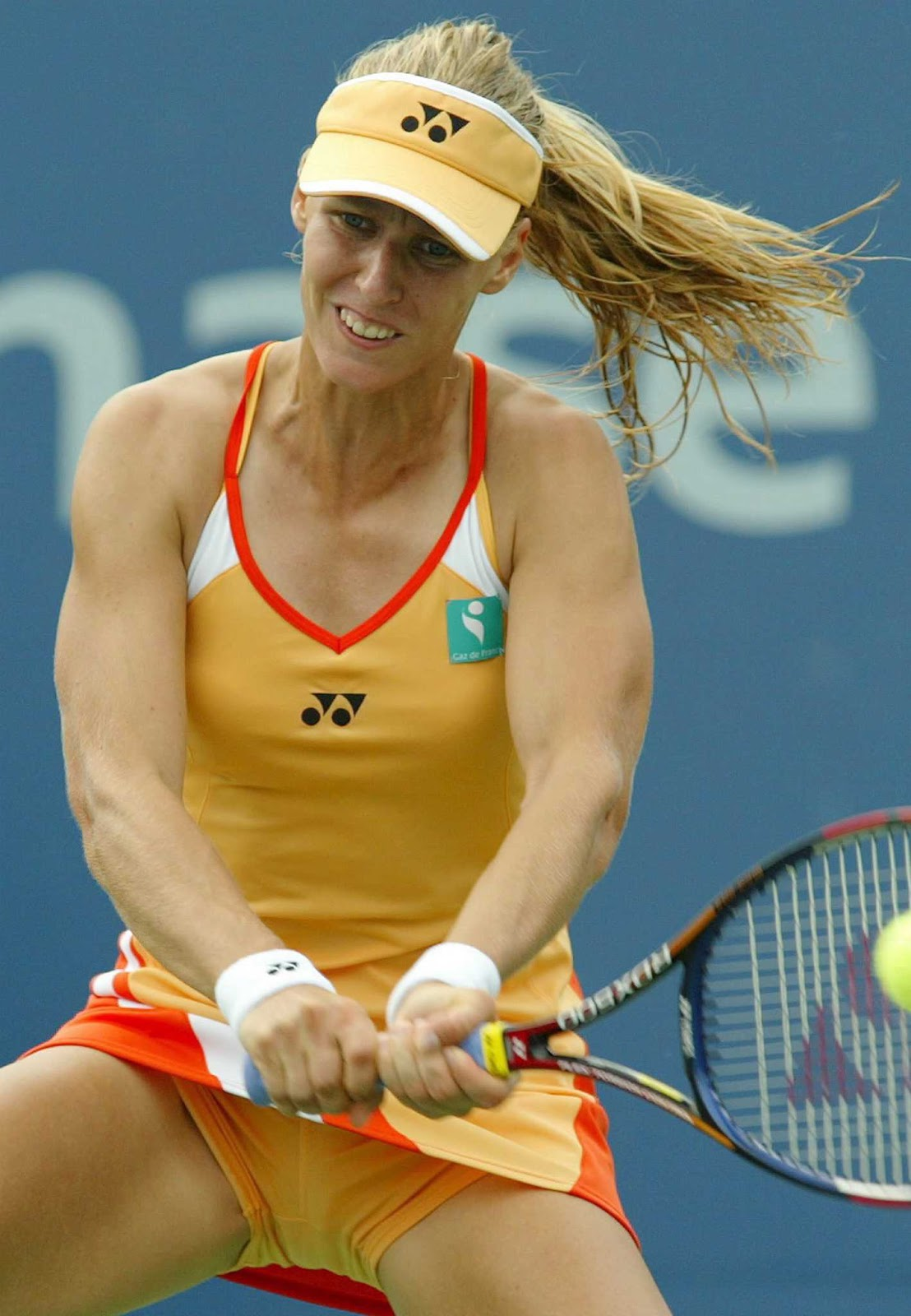 All About Sports Elena Dementieva Profile, Pictues And -2099