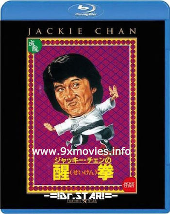 The Fearless Hyena 2 (1983) Dual Audio Hindi 720p BRRip 750mb
