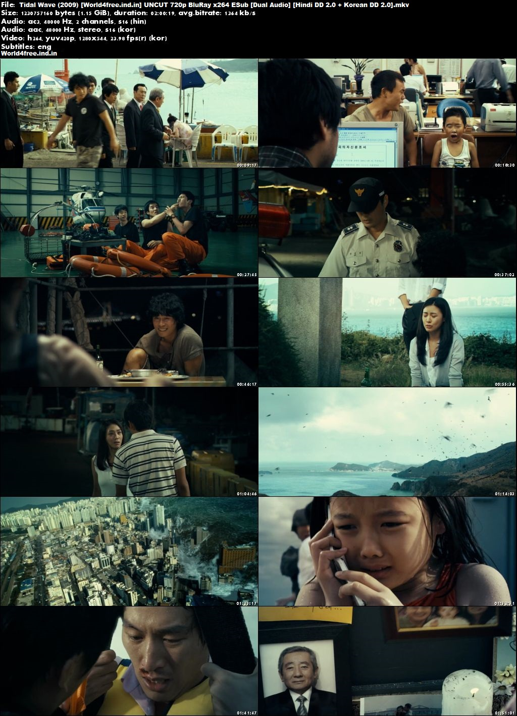 Tidal Wave 2009 world4freeus Korean Movie BRRip 720p Dual Audio Hindi