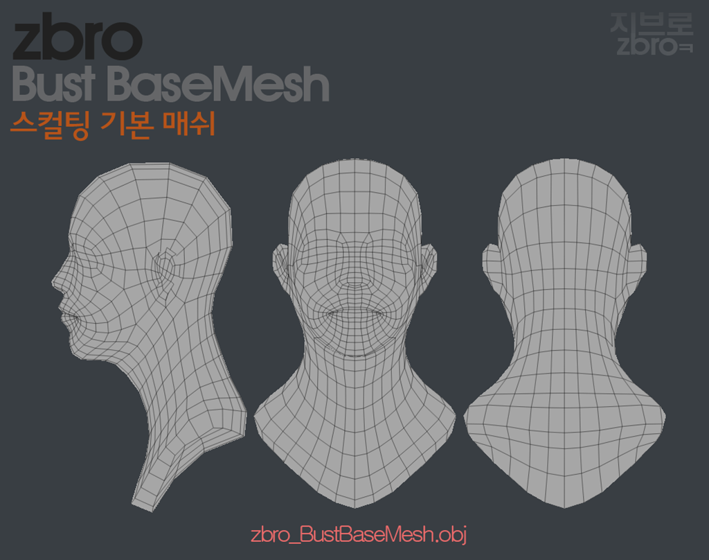 daily sculpt & WIP: Bust Base Mesh