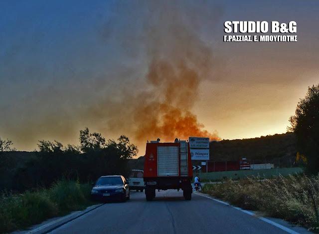 Υψηλός σήμερα ο κίνδυνος πυρκαγιάς για τα νησιά του Αργοσαρωνικού και την Τροζηνία