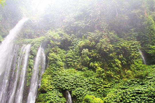 this slowly one-half twenty-four hours walk explores the foothills of spectacular  BestplacetovisitinIndonesia; Waterfalls Tour, Sindang Gile & Tiu Kelep Waterfalls inwards Senaru (Half Day)