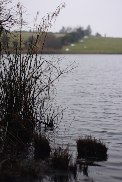 Lough Down, Moycullen