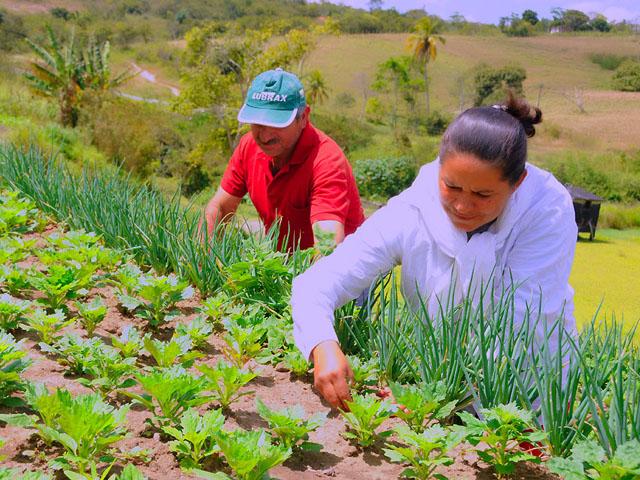 Mucambo será beneficiada com projetos para agricultura familiar