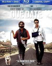 Due Date 2010 Hindi Dual Audio 300mb Download BluRay 480p