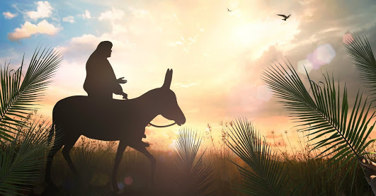 8 Things To Know About Jesus' Triumphal Entry