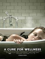 Poster de La cura del bienestar