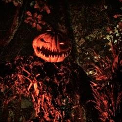 Halloween New England visits Haunted Overload _ Pumpkin Scarecrow