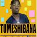 AUDIO | Sleya Van Ft Jose - Tumeshibana | Download Mp3