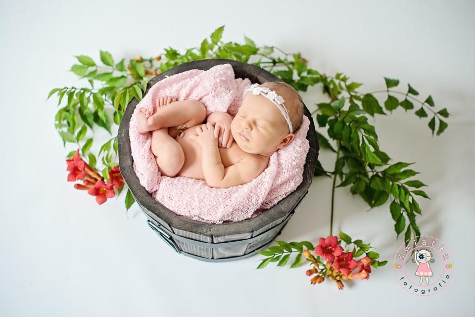 Zdjęcia małych dzieci, rodzinne, ciążowe w Trojmiescie