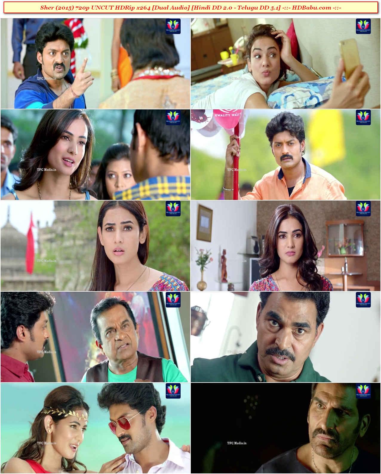 Sher Hindi Dual Audio Full Movie Download