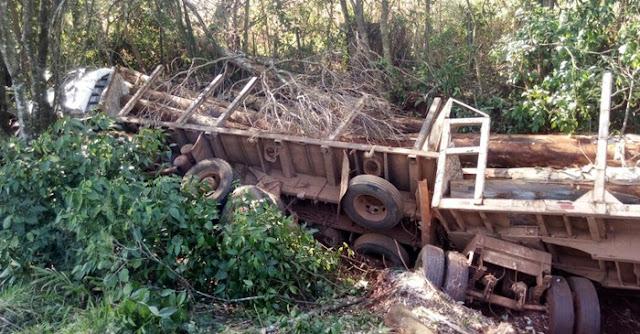 Caminhão carregado de eucalipto tomba na PR-462