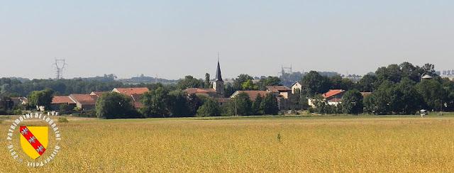 CLEREY-SUR-BRENON (54) - A la découverte du village !