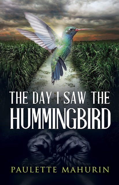 The Day I Saw the Hummingbird: A Novel by Paulette Mahurin Book Spotlight