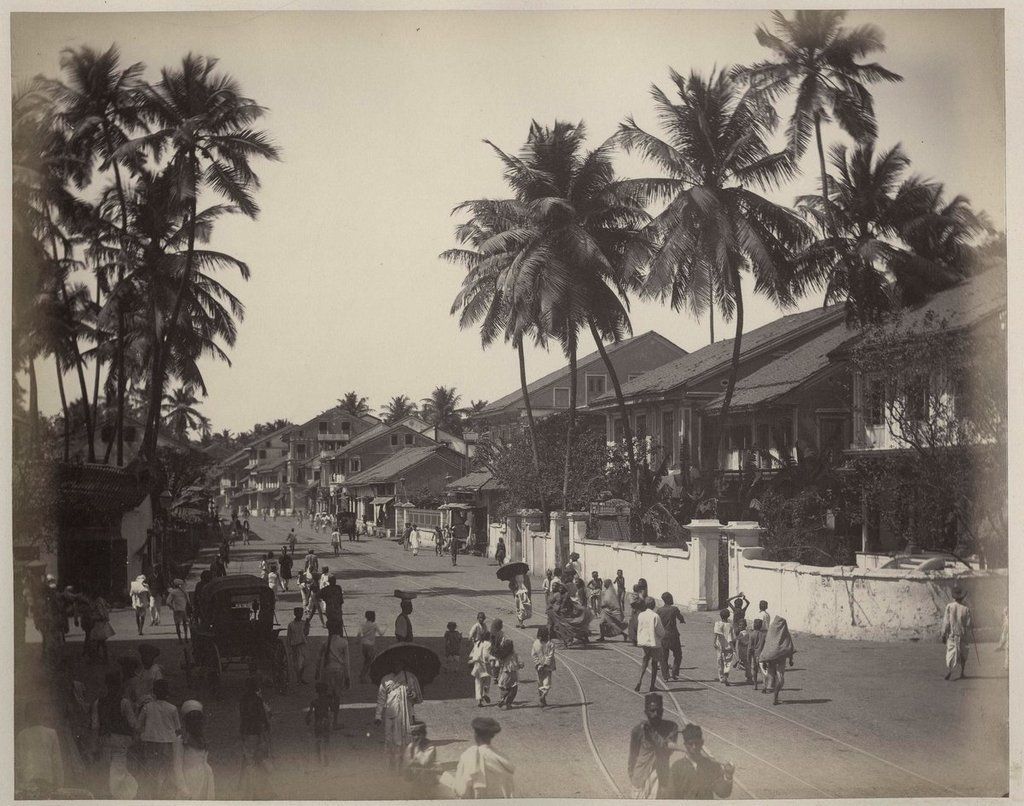View of a Street with Palm Tree - India Circa 1870's