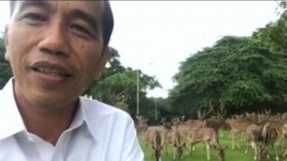 Jokowi: Saya Anak Orang Desa, Bukan Cina Singapura dan PKI