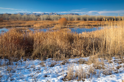 South Loop, Bosque del Apache