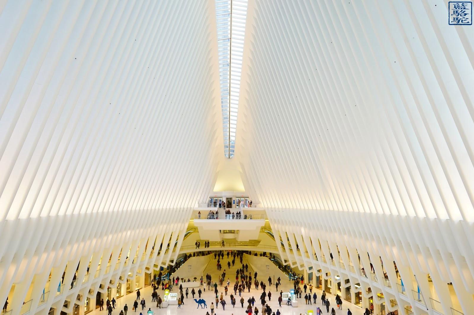 Le Chameau Bleu - L'intérieur de l'Oculus