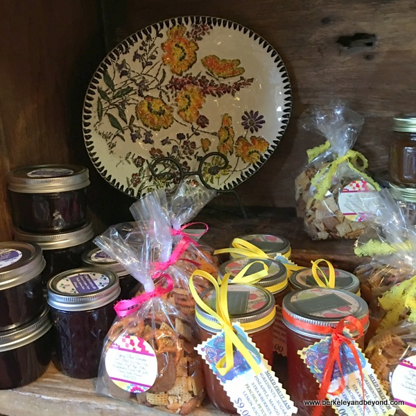 gift shop items at Indigeny Reserve in Sonora, California