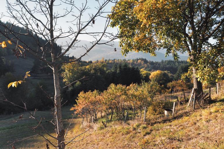 Paysage d'automne en Ardèche