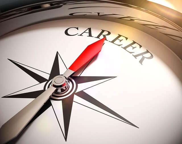 تحديد المستقبل المهني