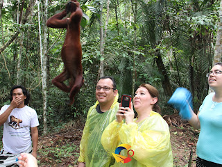 Guía turística del Amazonas Colombia, lugares turísticos, qué hacer