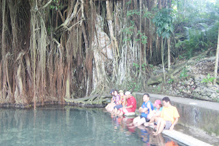 enchanting balete tree Siquijor