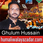 https://www.humaliwalyazadar.com/2018/09/ghulum-hussain-nohay-2019.html