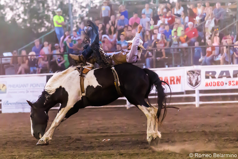 Molalla Buckeroo PRCA Rodeo Bareback Bronc Things to Do In Oregon City and Mt. Hood Territory