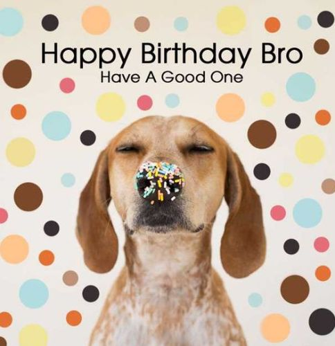 Happy birthday wishes for brother funny images from sister voltagebd