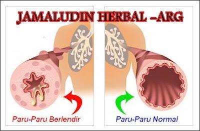 http://pengobatanmultikhasiat30.blogspot.co.id/2018/04/cara-mengeluarkan-lendir-di-paru-paru.html