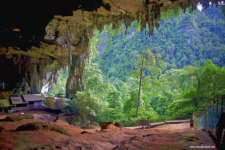 Niah National Park Taman Negara Niah