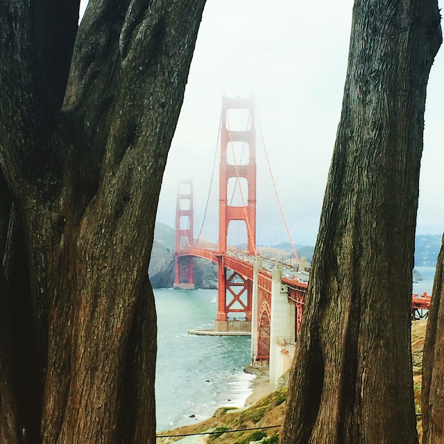 Visiting San Francisco - Best spots to see the Golden Gate Bridge | www.jacolynmurphy.com