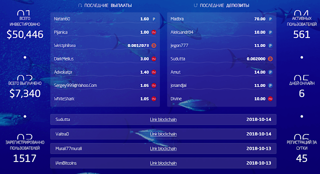 ocean3.biz обзор
