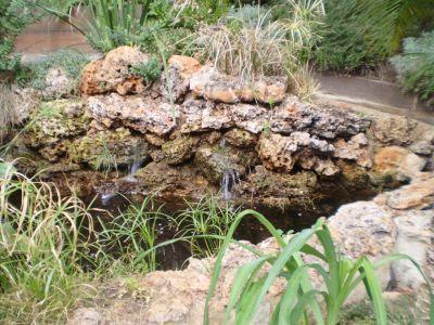 rocalla con estanque