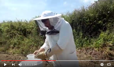 Vitamin Plus!!! Και τα μικρά μελίσσια γίνονται μεγάλα...Από την Μελισσοκομική Αθηνών VIDEO